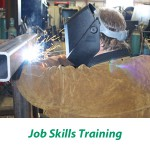 OWS job Skills