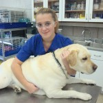 Animal Science/Veterinary Assistant