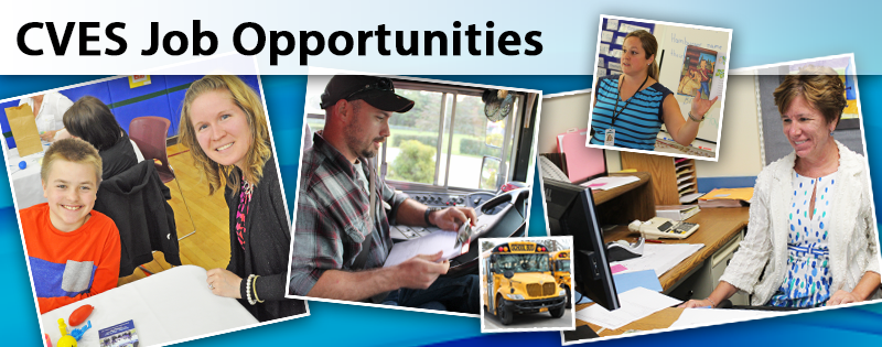 CVES Job Opportunities available now