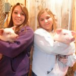 Animal Science: Large Animal Production students holding pigs