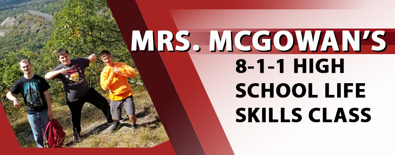Image for Mrs. McGowan's Class newsletter article.